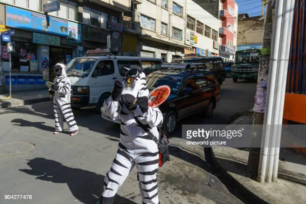 Bolivia Departamento de La Paz El Alto Transport Educational Zebras as a youth aid project in La Paz / El Alto