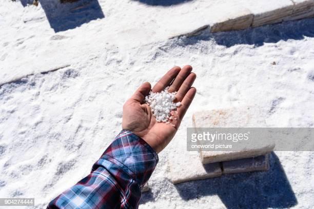 Bolivia Departamento de Potosí Uyuni salt in hand