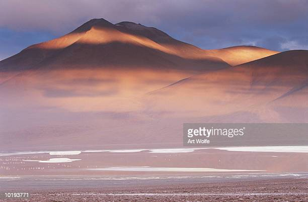 Bolivia, Eduardo Avaroa National Reserve, Laguna Colorado, flamingos