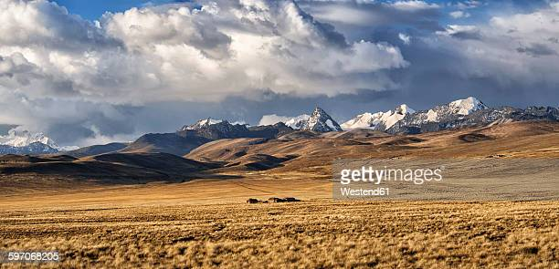 Bolivia, La Paz, Altiplano, group of small houses in the Bolivian Plateau with Cordillera Real mountains on the background