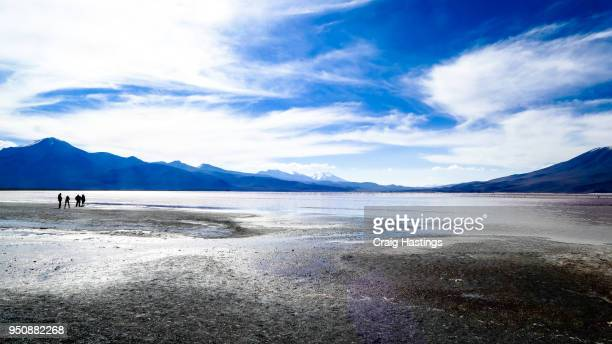 Bolivia Mountains and Pink Lagoon