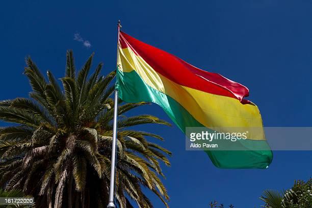bolivia, sucre, bolivian flaf - bandera boliviana fotografías e imágenes de stock