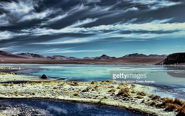 bolivian altiplano - laguna honda - victor ovies fotografías e imágenes de stock