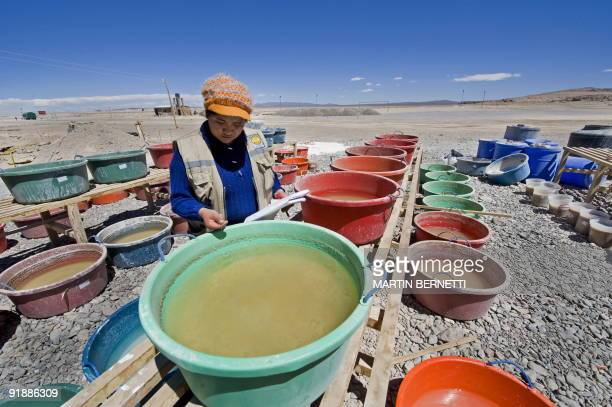Bolivian chemical engineer Monica Aguirre poses with plastic containers with brine at a pilot lithium plant under construction in Uyuni Bolivia...