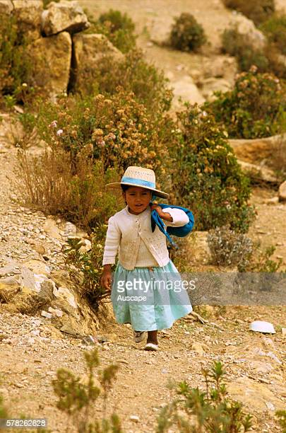 Bolivian child on her way home from school Isla Del Sol or Island of the Sun Lake Titicaca Bolivia