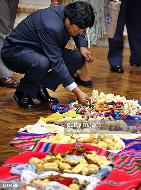 Bolivian President Evo Morales Ayma takes part in an Apthapi at Quemado presidential palace in La Paz on August 19 2009 The lunch an Andean custom...