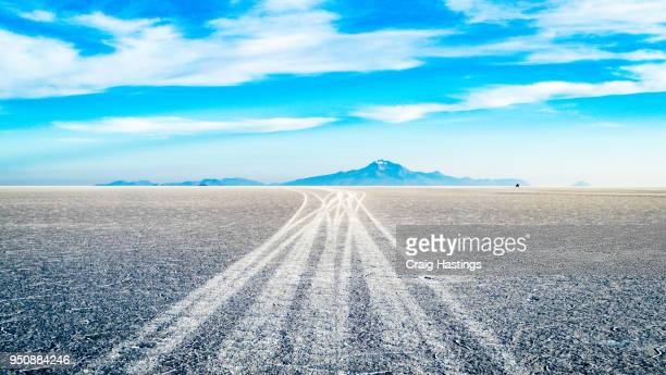 bolivian salt flats - new zealand stockfoto's en -beelden