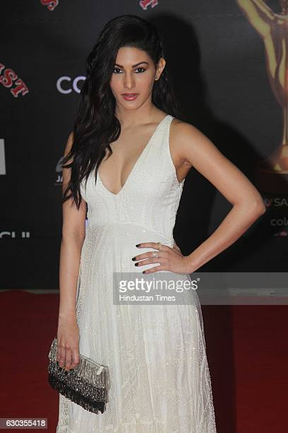 Bollywood actor Amyra Dastur poses on red carpet for shutterbugs during the Sansui Colors Stardust Awards 2016 on December 19 2016 in Mumbai India