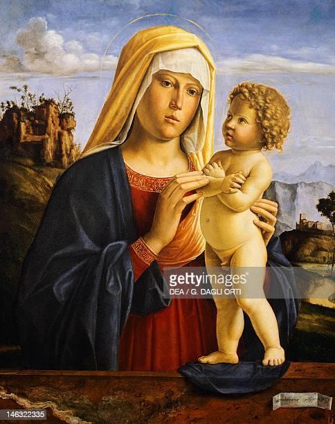 Bologna Pinacoteca Nazionale Di Bologna Madonna and Child by Giovanni Battista Cima da Conegliano