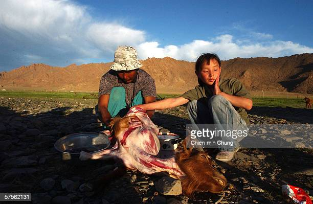 Bolor's adoptive fatther Batjargal prepares a goat for a celebration dinner honoring Balors return on July 4 2005 in Khovd Mongolia