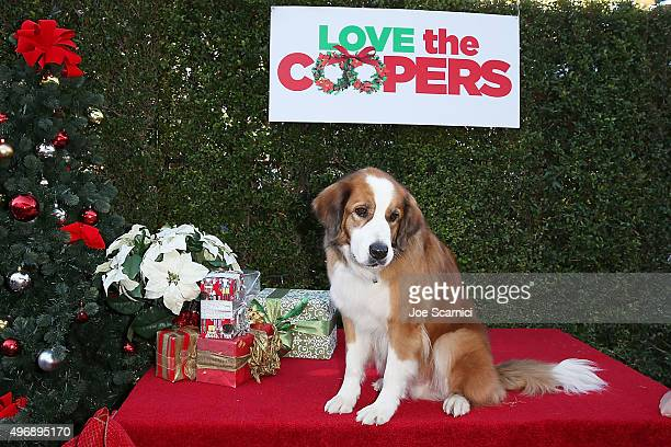 Bolt attends the Love The Coopers Holiday Luncheon Benefiting The LA Regional Food Bank at The Grove on November 12 2015 in Los Angeles California
