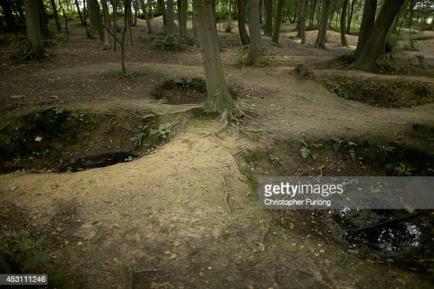 Bomb craters cover the woodland floor at the preserved 'Sanctuary Wood' on August 3 2014 in Ypres Belgium Monday 4th August marks the 100th...