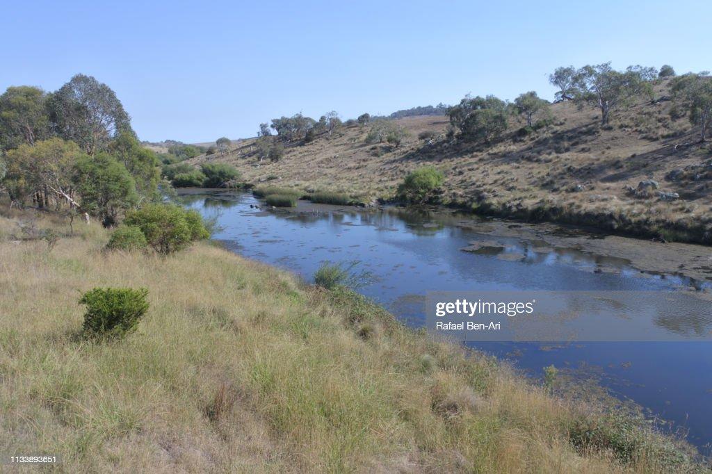 Bombala Platypus River in Victoria Australia : Stock Photo