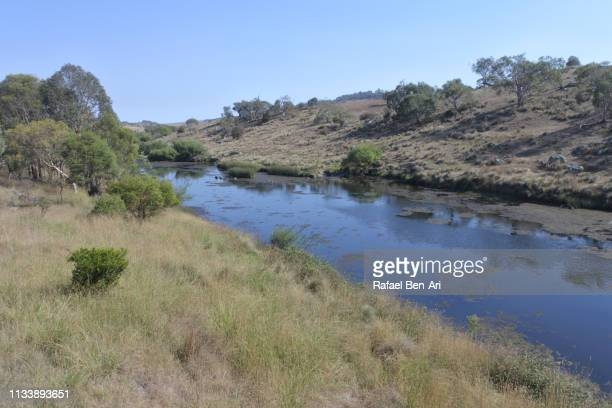 Bombala Platypus River in Victoria Australia