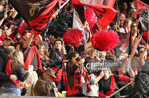 Bombers supporters in the crowd celebrate winning at the final siren during the round 21 AFL match between the Essendon Bombers and the Gold Coast...