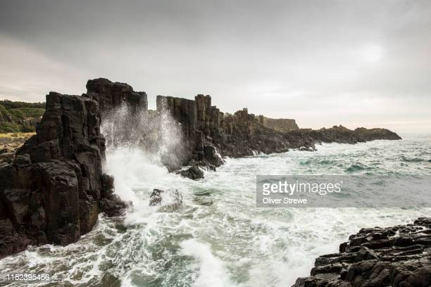 bombo headland - basalt stock pictures, royalty-free photos & images