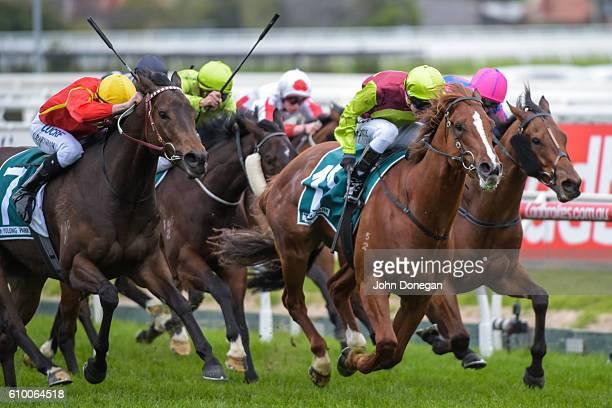 Bon Aurum ridden by Kerrin McEvoy wins Yulong Park Sir Rupert Clarke Stakes at Caulfield Racecourse on September 24 2016 in Caulfield Australia