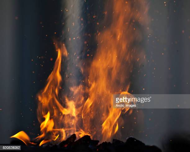 bon fire - bonfire stock pictures, royalty-free photos & images
