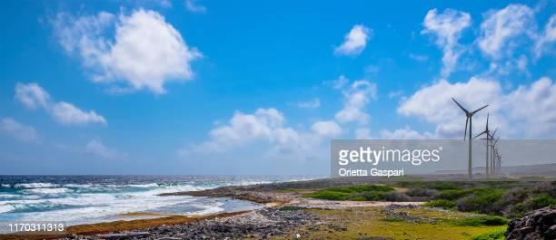 野生の東海岸のボネール、風力タービン - ボネール島 ストックフォトと画像