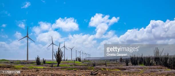 bonaire, windturbines aan de wilde oostkust - caribisch nederland stockfoto's en -beelden