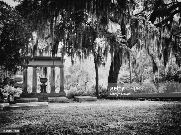 bonaventure cemitério em savannah - geórgia sul dos estados unidos - fotografias e filmes do acervo