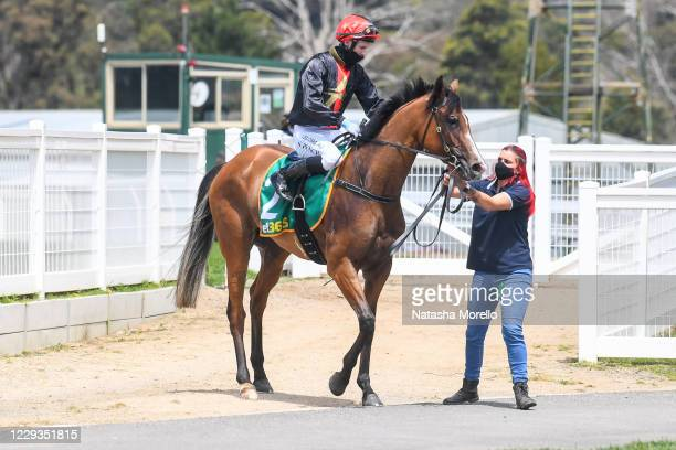 Bond Girl ridden by Nathan Punch in the mounting yard before the bet365 3YO Fillies Maiden Plate at Kilmore Racecourse on October 30, 2020 in...