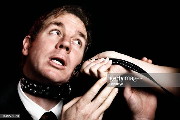 bondage businessman on leash pleads like puppy dog - fetish wear stock photos and pictures