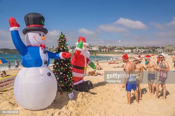 Bondi Beach - Christmas Tree