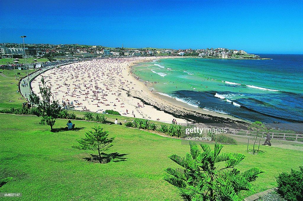 Bondi Beach, New South Wales, Australia : Stock Photo
