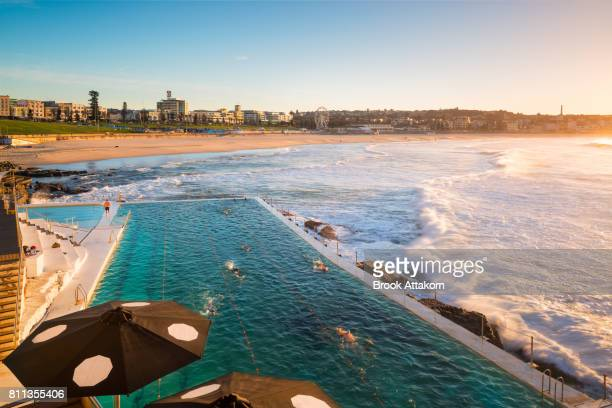 bondi beach on morning. - sydney stock pictures, royalty-free photos & images
