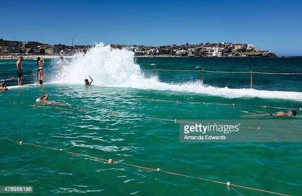 Bondi Icebergs Baths Bondi Beach Sydney NSW Australia