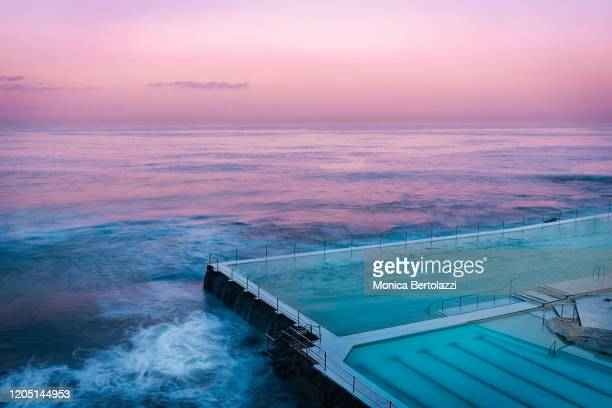 bondi icebergs rock pool - standing water stock pictures, royalty-free photos & images