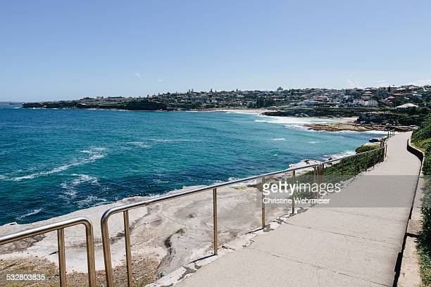 bondi to bronte coastal walk - christine wehrmeier stock photos and pictures
