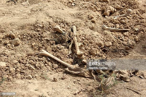 Bones are seen while the bodies are removed from a mass grave with 36 bodies, they were killed allegedly by former Baath regime, discovered in...