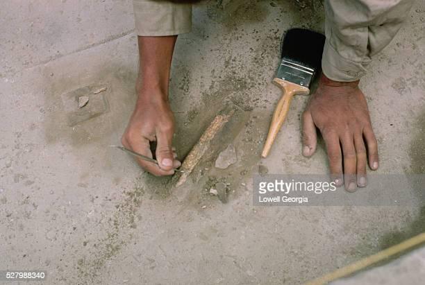 Bones Found During Archaeological Excavation