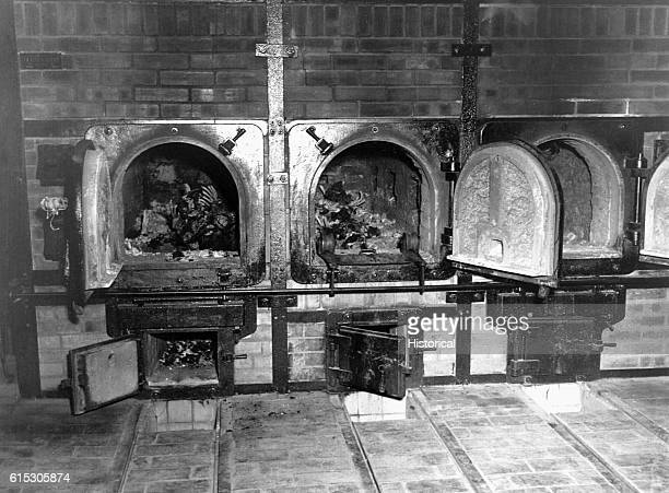 Bones of antiNazi German women still lie in the crematoriums in the German concentration camp at Weimar Germany liberated by the 3rd US Army...