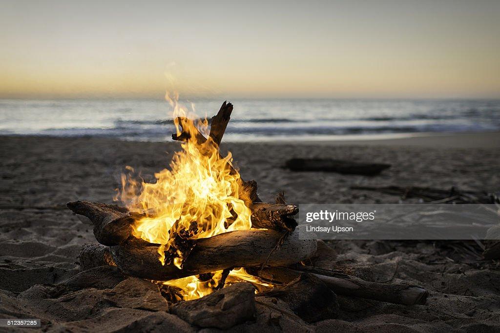 Bonfire burning on beach : Stock Photo