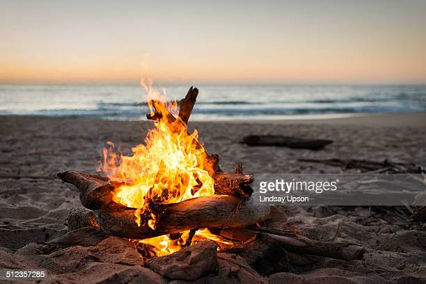 Bonfire burning on beach