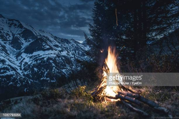 bonfire on log in forest against sky - lagerfeuer stock-fotos und bilder