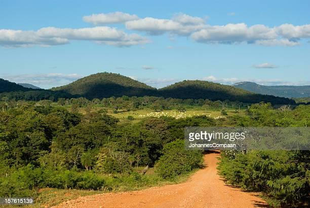 bonito, mato grosso do sul, brazil - mato grosso do sul state stock pictures, royalty-free photos & images