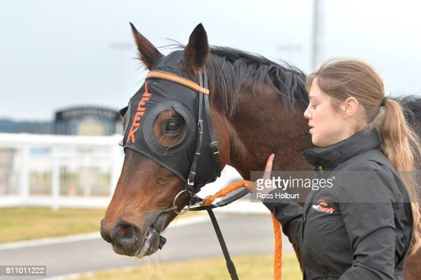 Bonnard after winning the Thrifty BM58 Handicap at Racingcom Park Synthetic Racecourse on July 09 2017 in Pakenham Australia