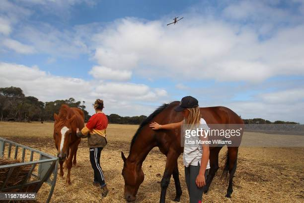 Bonnie Morris and sister Raemi Morris comfort their horses as family and CFS firefighters battle bushfires at the edge of their family farm on...
