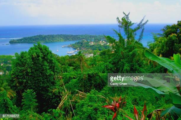 bonnieview - paisajes de jamaica fotografías e imágenes de stock