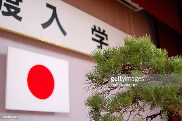 bonsai tree and the flag of japan - japanese flag stock photos and pictures