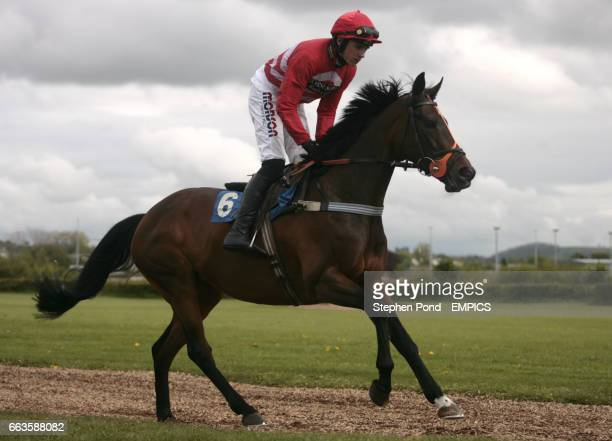 Boogie Dancer ridden by Harry Skelton going to post for the Rose Lion In Bromyard Novices' Handicap Hurdle