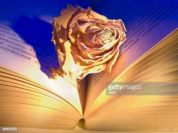 Book and dried up rose