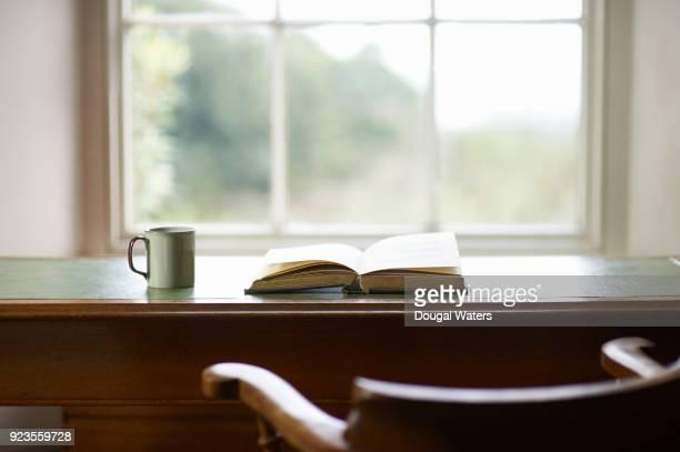 Book and mug on traditional writing desk beside window.