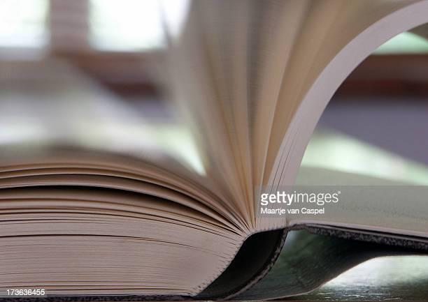 Livro e páginas em movimento 02