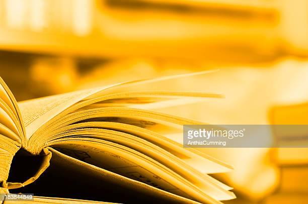 扇形のご予約には、ライブラリーのブックシェルフにオープン - literature ストックフォトと画像