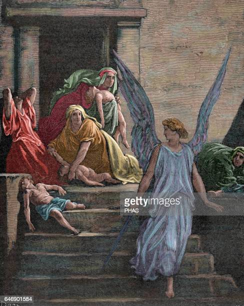 Book of Exodus The Plagues of Egypt Tenth plague death of firstborn Last plague sent by God in order to the Egyptian pharaoh releases Israelites from...